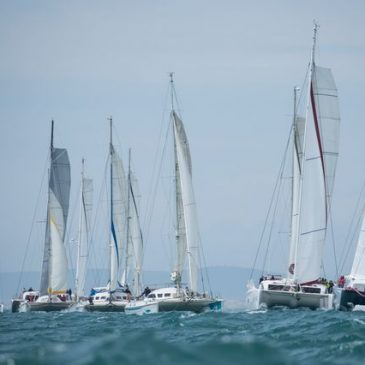 Outremer Cup