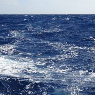 Transat Tenerife – Barbados – Journal de bord
